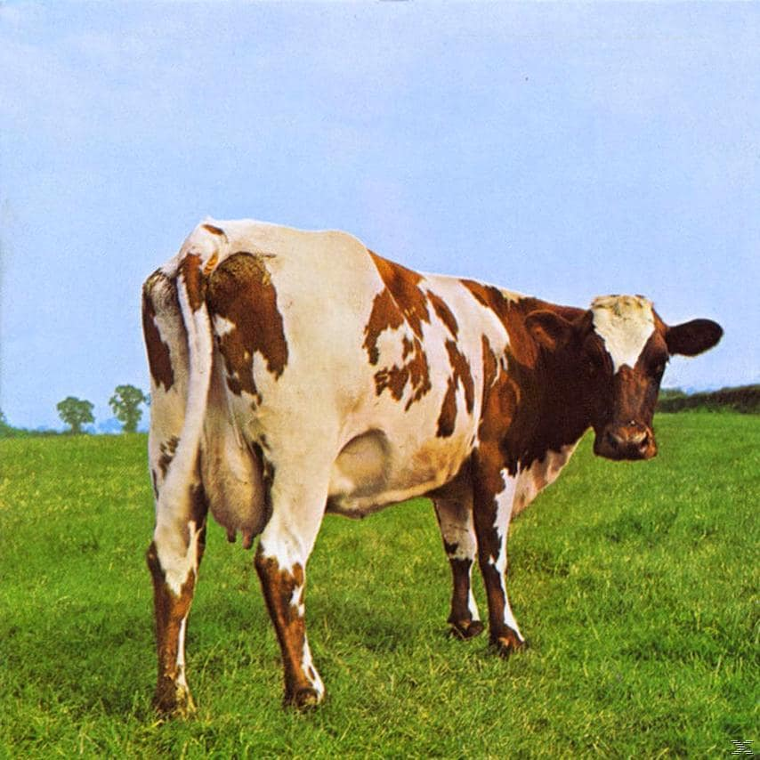 ATOM HEART MOTHER (LP)